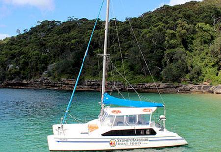 sydney harbour cruises tiger 2