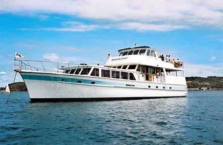 bennelong sydney harbour cruises