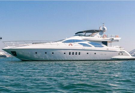 seven star sydney harbour cruises