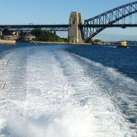 Book A Harbour Cruise With Dinner
