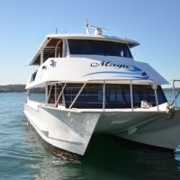 Boxing Day Cruises on Sydney Harbour